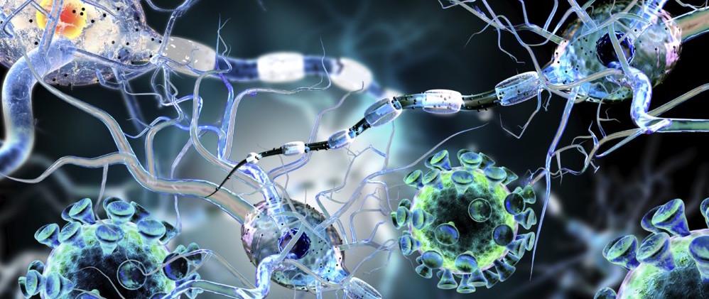 La OMS publica la lista de bacterias resistentes a fármacos...