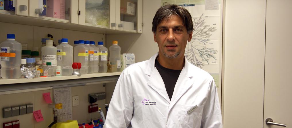 Un estudio del Vall d´Hebron abre una línea terapéutica para el melanoma...