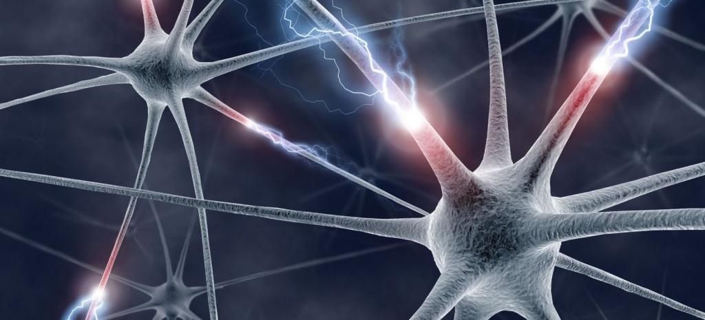 Ensayo pionero contra la esclerosis...