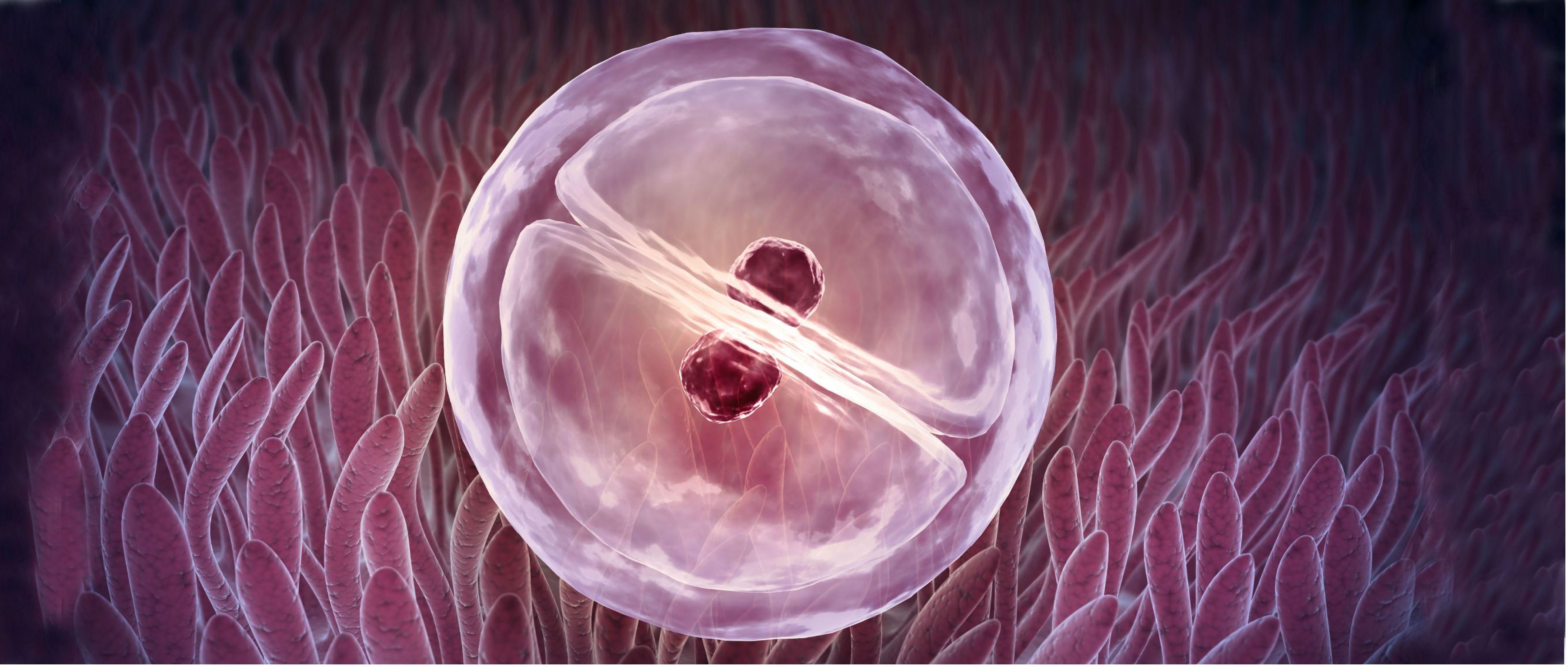 Corrigen en embriones una enfermedad que causa muerte súbita...