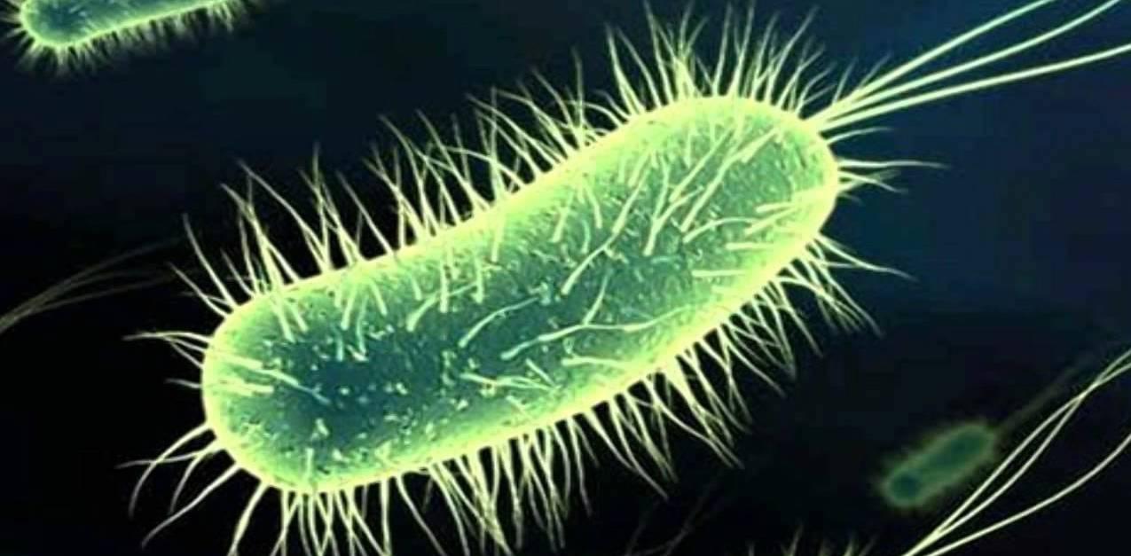 La resistencia a antibióticos frena curaciones...
