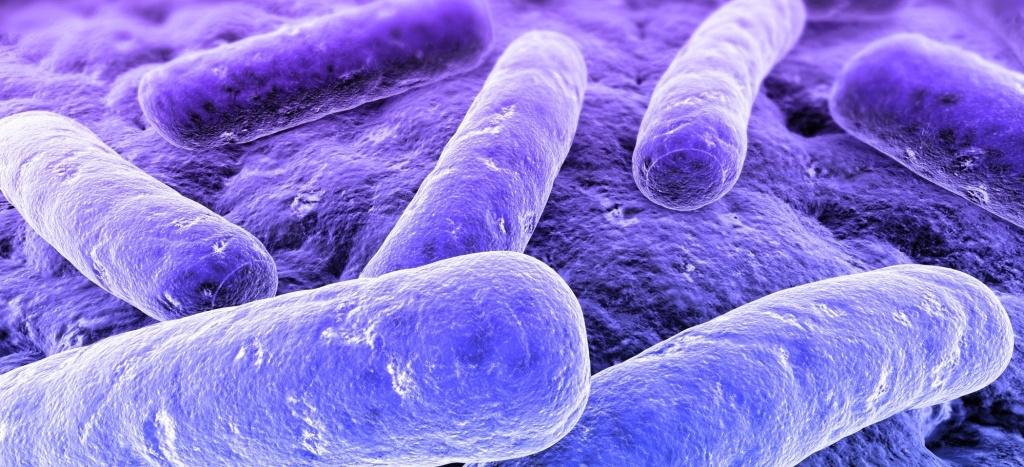 La sepsis infecciosa causa más muertes que infarto e ictus juntos...