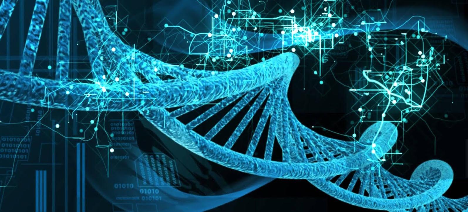 Una nueva técnica edita el genoma sin tocar los genes...
