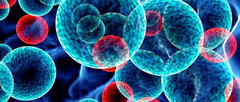 Un sistema de inmunoterapia contra el cáncer a control remoto...