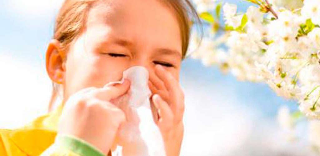 La SEAIC prevé que la alergia será más intensa esta primavera...