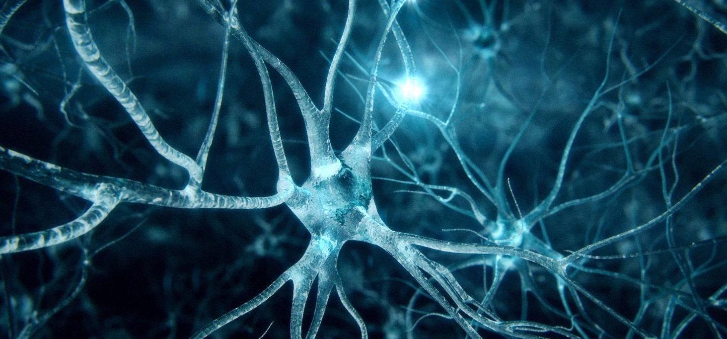 Boosting neuronal repair after traumatic injuries...