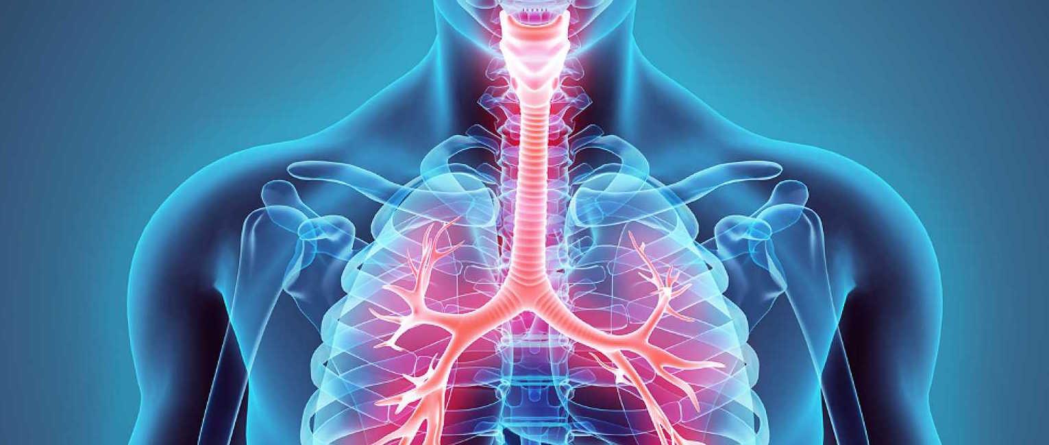 Identifican una diferencia genética entre la EPOC y el síndrome EPOC-asma...