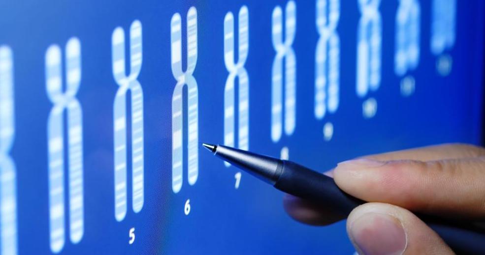 Terapia génica para la insuficiencia renal...
