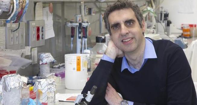 Biomarcador que permite mejorar el tratamiento del cáncer de pulmón...