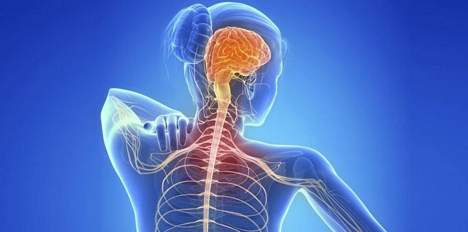 Un ensayo clínico en Barcelona trata la esclerosis múltiple con células propias...