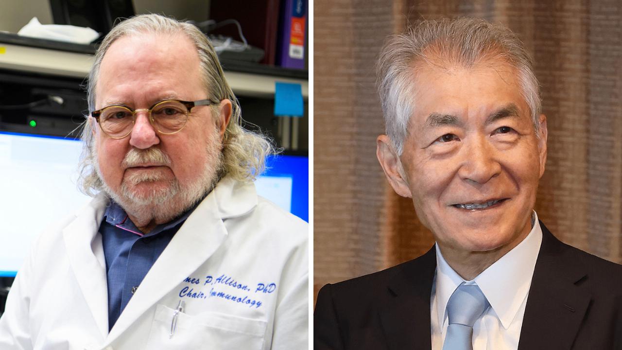 Nobel a la inmunoterapia en cáncer...
