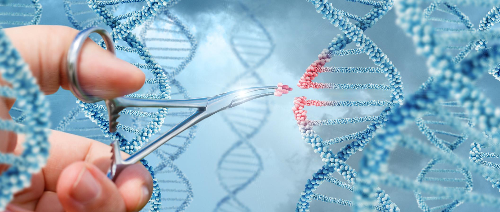 Los 'bebés CRISPR'...