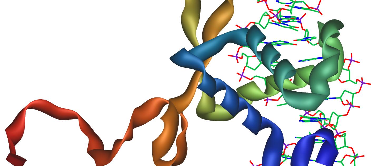 El primer mapa genético del TDAH...