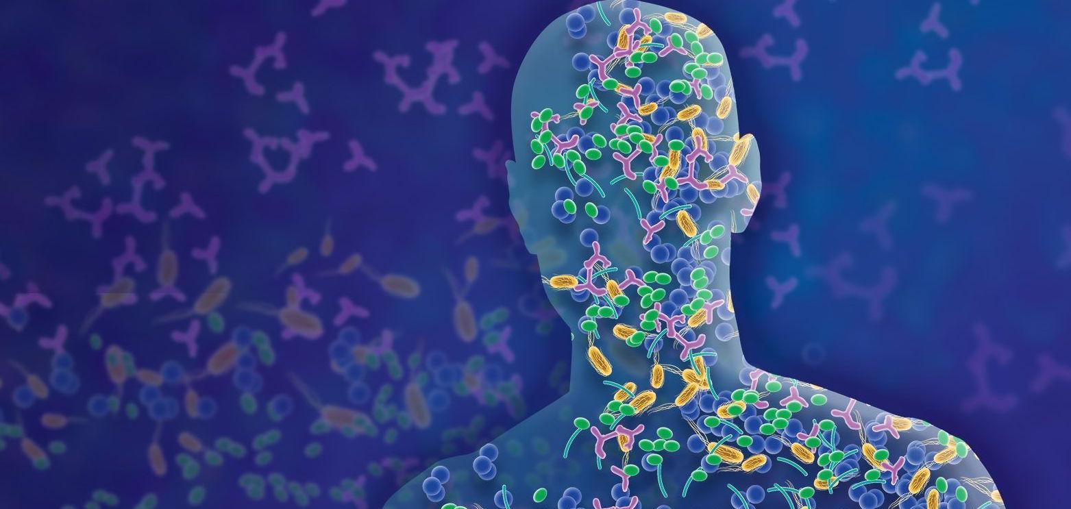 Un microbioma saludable mejora resultados del trasplante de progenitores hematopoyéticos...