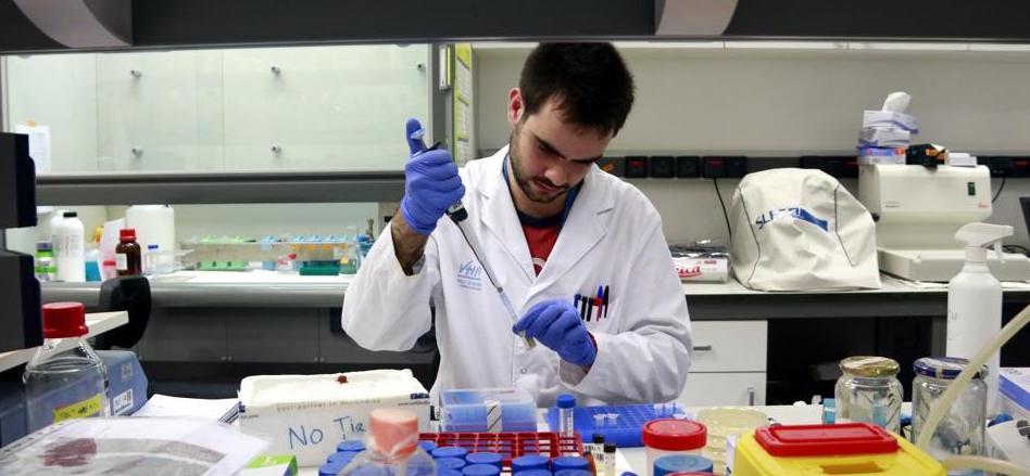 Analizar qué genes están activos en un cáncer mejora la terapia personalizada...