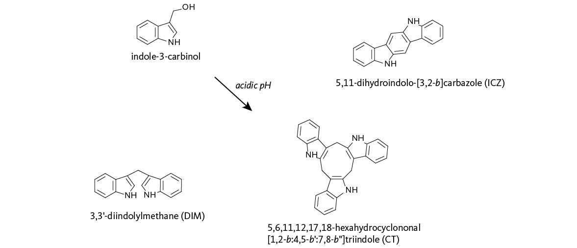 El indol-3-carbinol (I3C), presente en el brócoli, reactiva a un gen tumorsupresor...