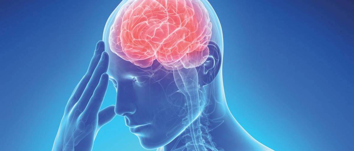 El cierre de la orejuela 'abre la puerta' a la prevención del ictus por fibrilación auricular...