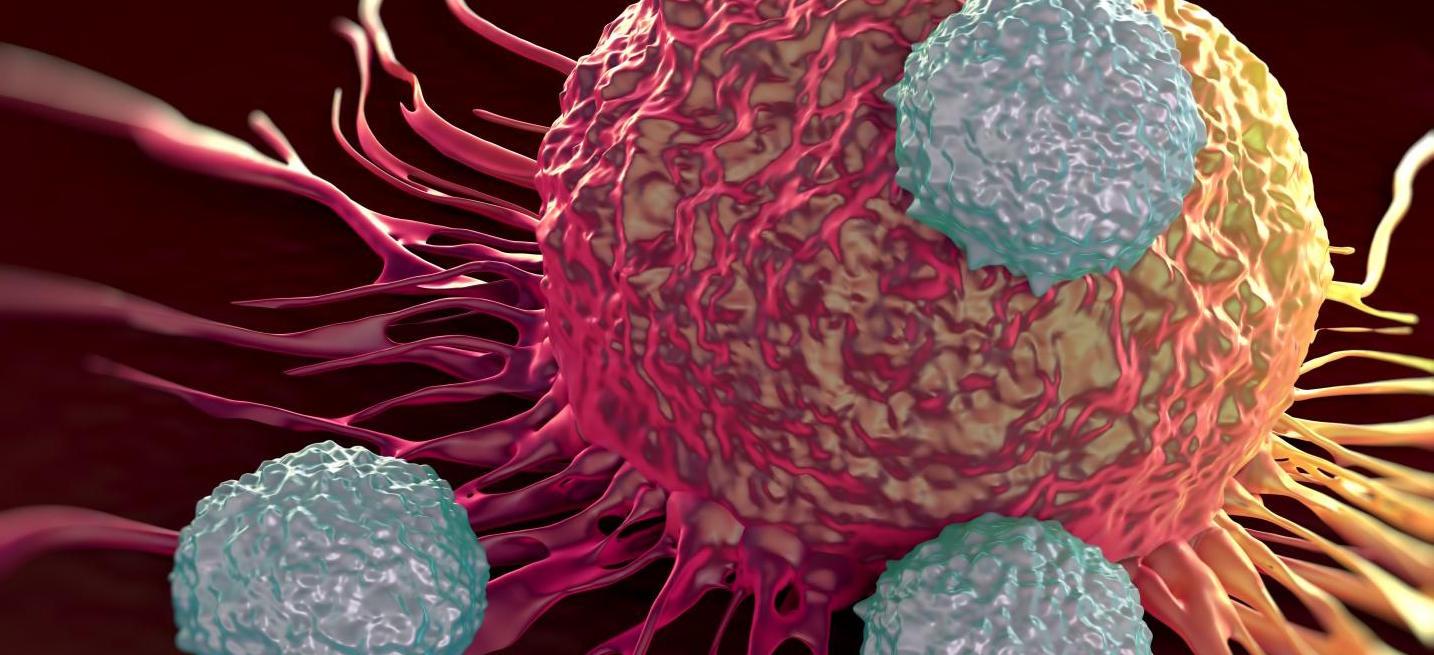 Ensayada con éxito una innovadora combinación de fármacos contra el cáncer...