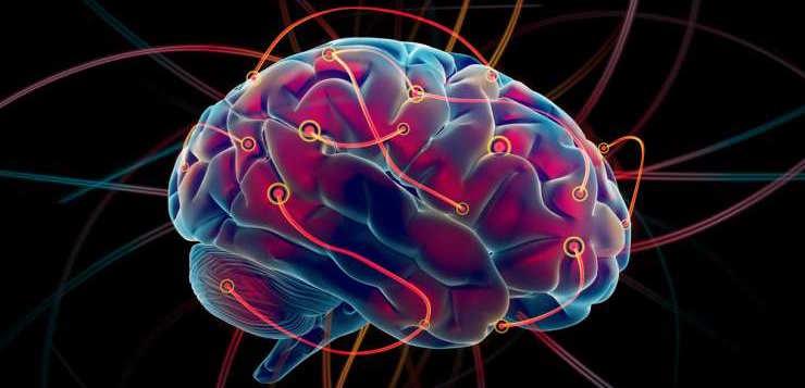 Descubren la huella epigenética de la memoria celular que forma los recuerdos...