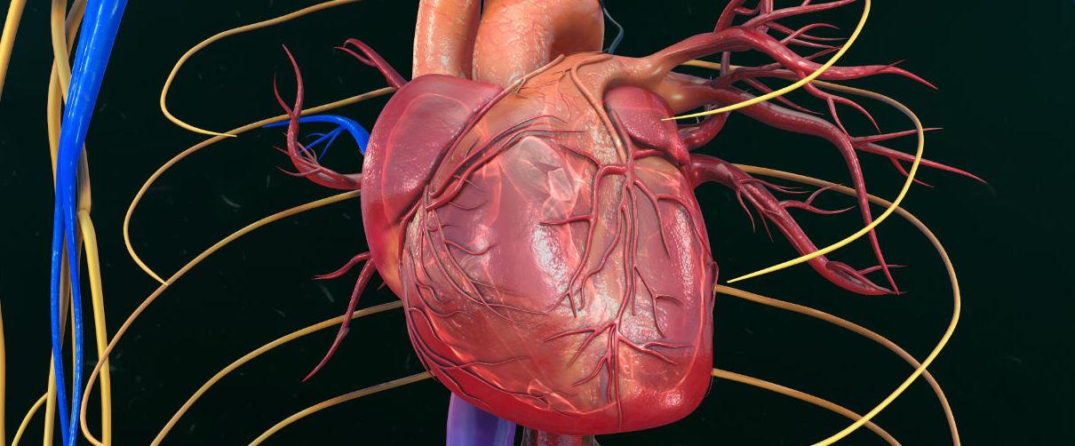 Un inhibidor SGLT-2, ofrece beneficio cardiovascular en no diabéticos con insuficiencia cardiaca...
