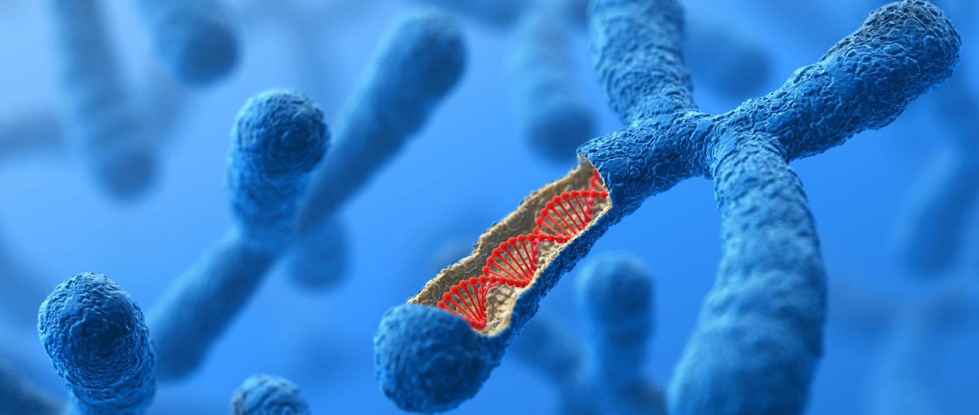 Genetics may explain up to 25% of same-sex behavior, giant analysis reveals...