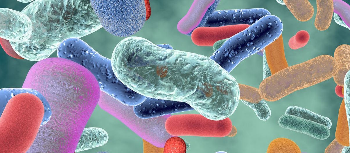 New 'reverse genomics' method brings previously hidden bacteria to life...