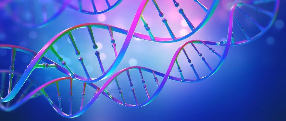 La genética regula cuántas horas de sueño son reparadoras...