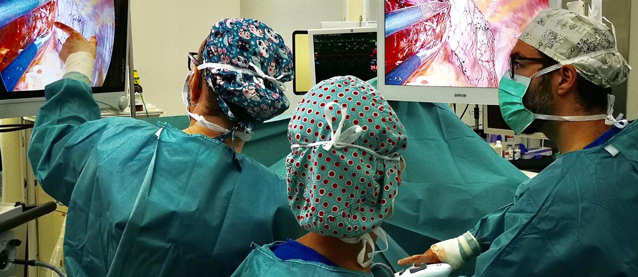 Resección pulmonar pionera en tumores iniciales por vía subxifoidea...