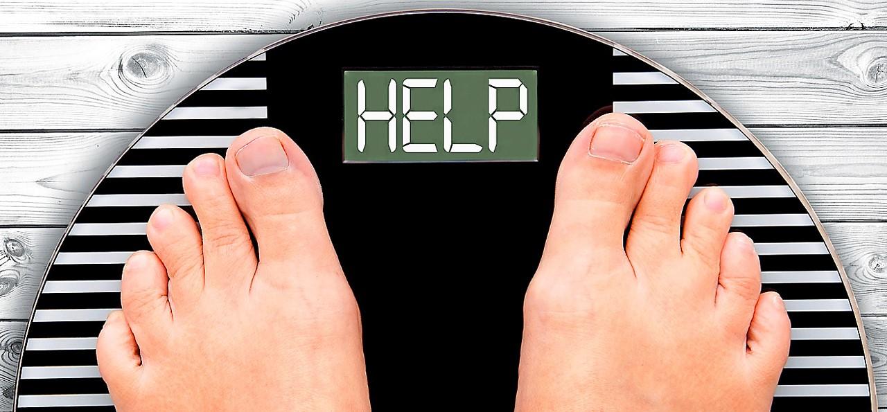Curar la obesidad desde el cerebro...