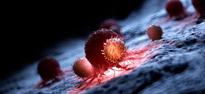 Mil investigadores analizan el genoma de 2.700 tumores en busca de nuevas terapias anticáncer...