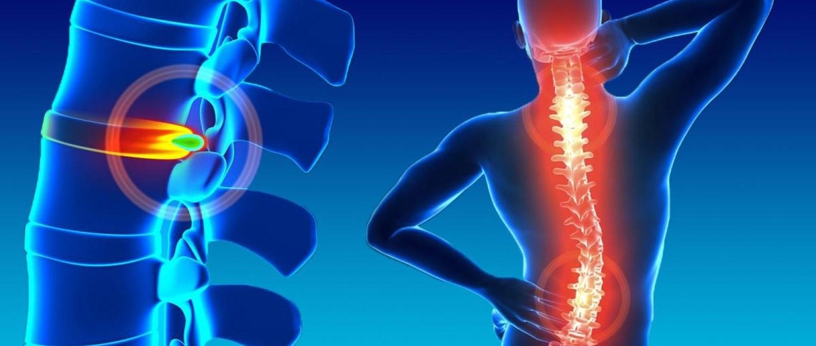 Se estudia cómo regenerar una lesión de médula espinal...