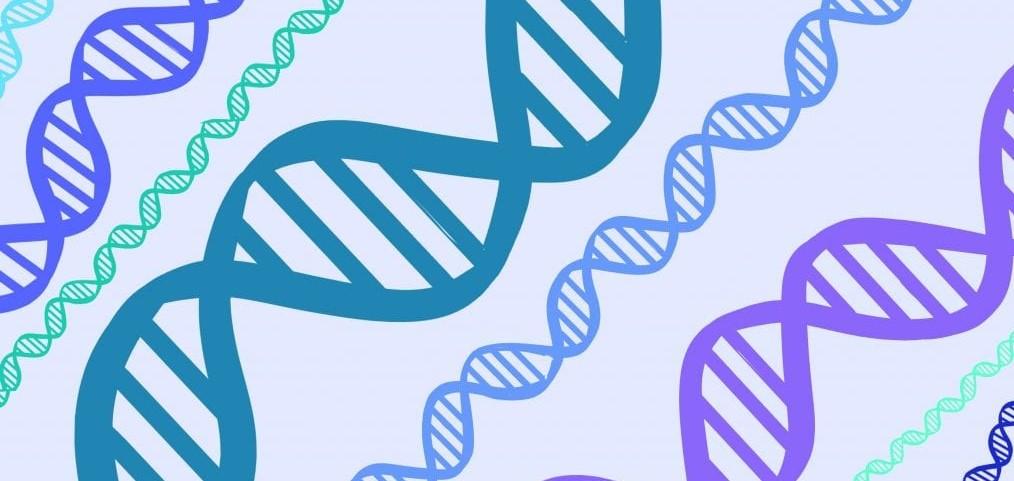 El porqué de la variabilidad en la gravedad de la Covid-19 podría estar en los genes...