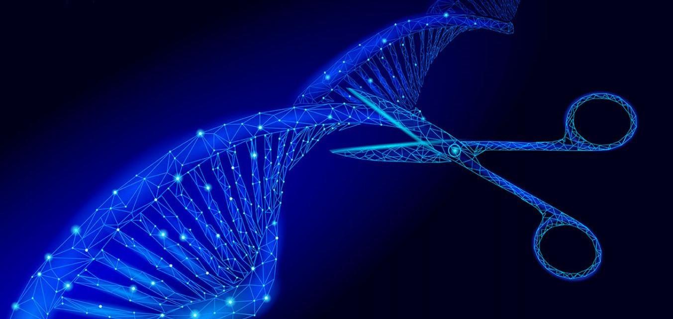 'Tijeras' CRISPR para cortar el ARN del coronavirus...