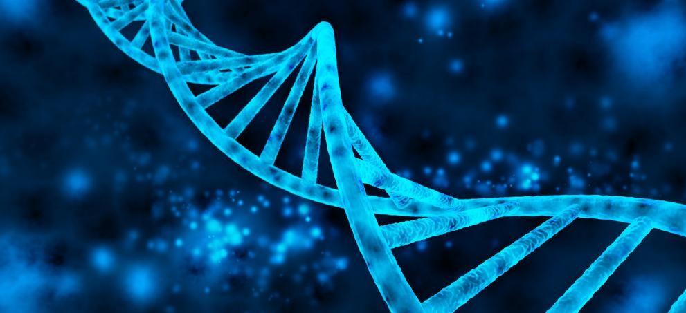 Una nueva técnica para identificar genes implicados en el desarrollo de tumores...