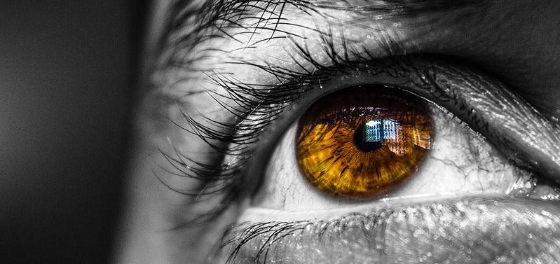 Una retina 'inyectable' devuelve la vista a ratas ciegas...
