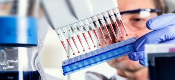 Identifican cinco biomarcadores en sangre que marcan mayor probabilidad de gravedad del Covid-19...