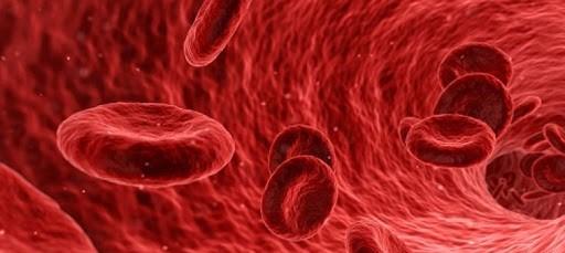 Virtual preceptorship training program for hematologists...