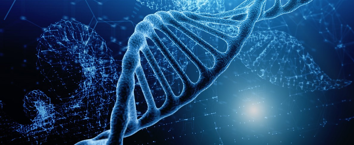 """Hallan una """"firma epigenética"""" que predice la gravedad del Covid-19 con una precisión del 90%..."""