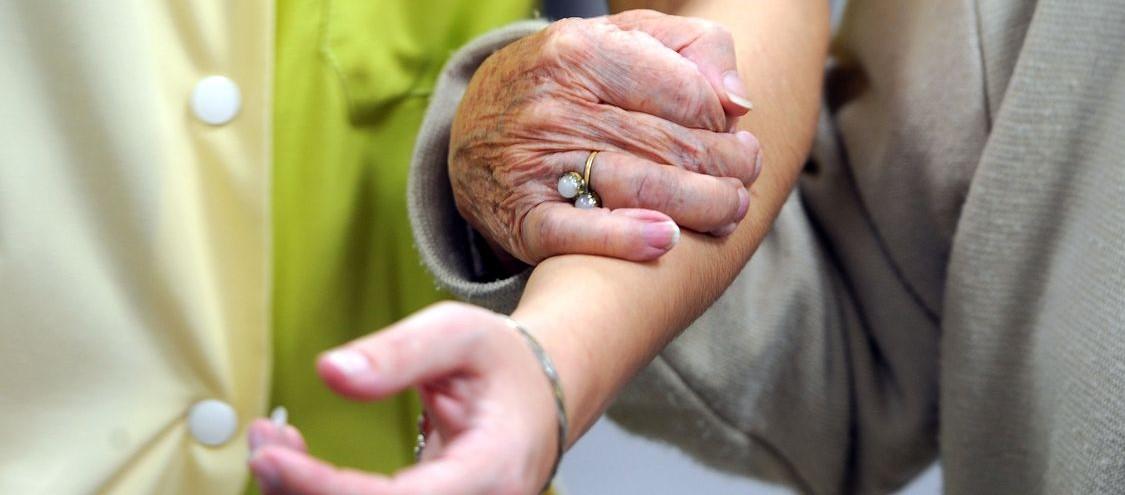 La consanguinidad es un factor de riesgo para el desarrollo del alzhéimer...