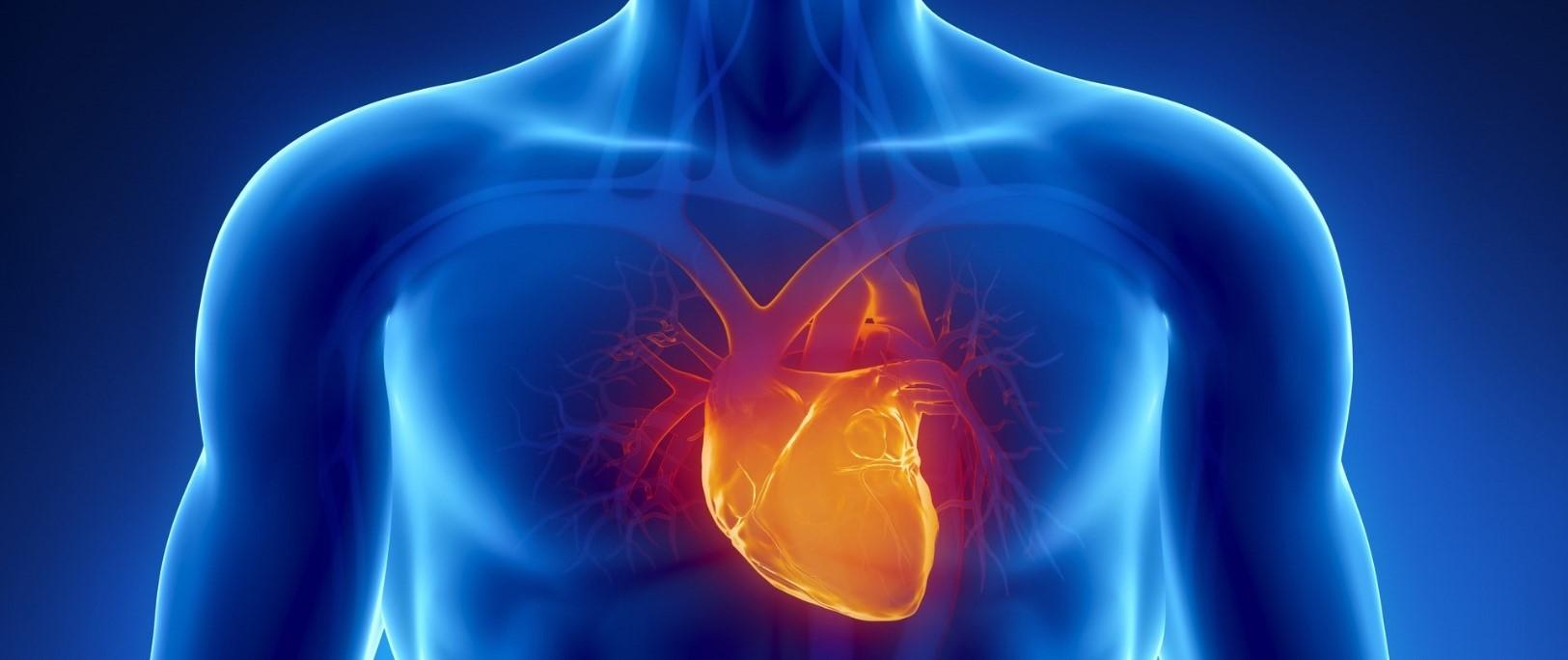 Una gota de sangre para identificar un 'falso infarto'...