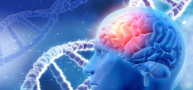 Identifican 33 nuevas variantes genéticas asociadas a trastorno bipolar...