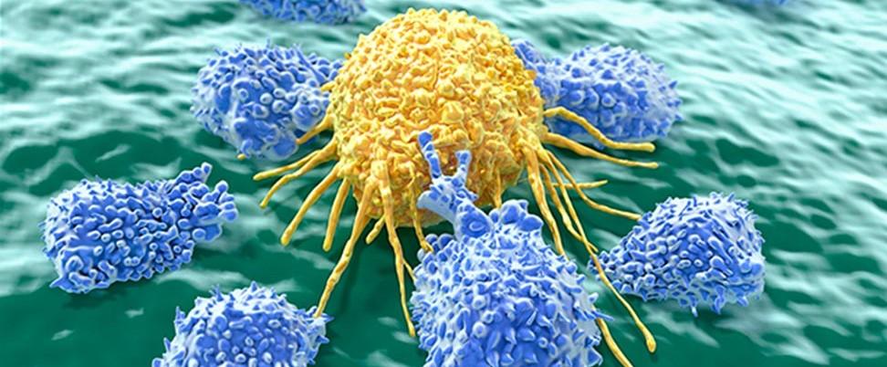 Inmunoterapia y quimioterapia: destinadas a entenderse...